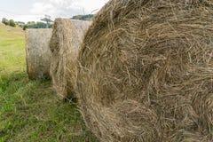 Hay Balls Royalty-vrije Stock Afbeeldingen