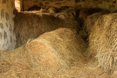 Hay in Barn Stock Image