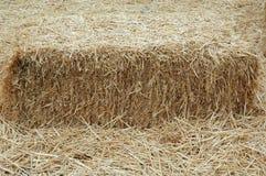 Hay Barn Farm. Hay barn  for feeding Stock Photography