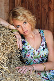 In the hay barn Stock Photo
