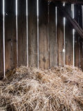 Hay-barn. Straw in the old barn with timber wall Stock Images