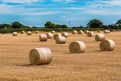 Hay Barrels in a field Stock Photos