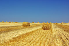 Hay bayle in the field of Alentejo. Royalty Free Stock Photos