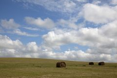 Hay bundle Stock Images