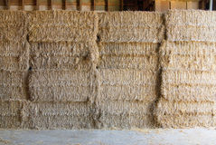 Hay bundle Royalty Free Stock Images