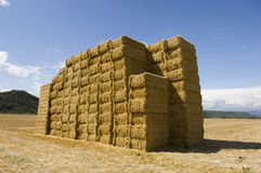 Hay bundles Stock Photo