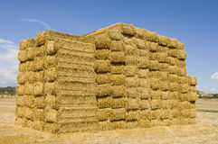 Hay bundles Royalty Free Stock Image