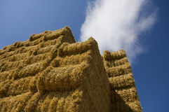 Hay bundles Royalty Free Stock Photo