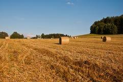 Hay bundles Stock Photography