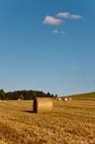 Hay bundles Royalty Free Stock Image