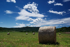 Hay bundles Royalty Free Stock Photos