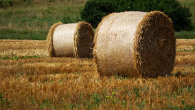 Hay bundles Royalty Free Stock Images