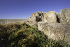 Hay bundles by the field. Stock Photos