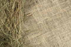 Hay on burlap Stock Photography