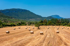 Hay Circles en campo cerca de Valldemossa Mallorca Foto de archivo libre de regalías