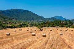 Hay Circles i fält nära Valldemossa Mallorca Royaltyfri Foto