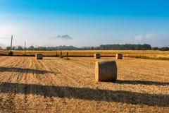 Hay Circles nel campo a Felanitx Mallorca Immagini Stock Libere da Diritti
