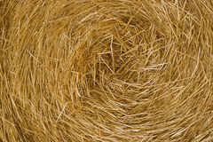 Hay close up Stock Photo