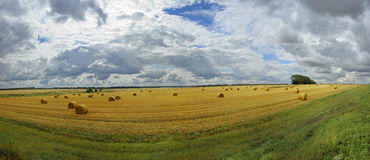 Hay and clouds Stock Image