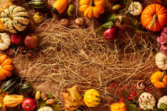 Hay with copy space bordered by gourds Royalty Free Stock Photography