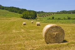 Hay on countryside stock image