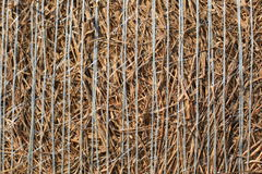 Hay Details Royalty Free Stock Photos