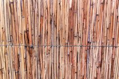 Hay or dry grass background. Thatch roof for background, dried straw or cane. Detail of Japanese thatched roof texture background. straw wall. Hay or dry grass stock image