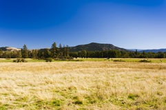 Hay farm under cloudless blue sky Royalty Free Stock Photography