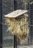 Hay feeder Royalty Free Stock Image