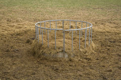 Hay feeder for farm animals Royalty Free Stock Photo
