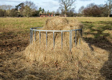 Hay Feeder Stock Images