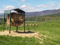 Hay Feeder su terreno coltivabile Fotografie Stock