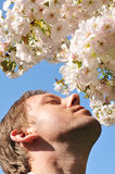 Hay fever. Young man allergic to pollen and spring flowers Royalty Free Stock Photography