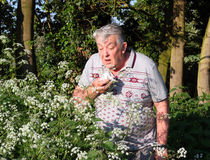 Hay fever sufferer sneezing. Allergic rhinitis. Elderly man in the countryside sneezing because the pollen is causing him to have hay fever or allergic rhinitis stock photography