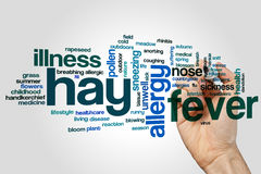Hay fever word cloud. Concept on grey background Stock Photography