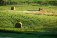 Hay field. Three round hay bales in a rural Iowa field Stock Photography