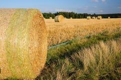 Hay field Royalty Free Stock Photos
