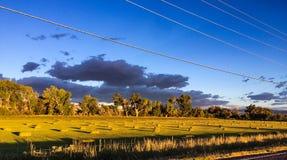 Hay Field lizenzfreie stockfotos