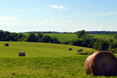 Hay Field In The Afternoon Lizenzfreies Stockfoto