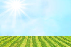 Hay field and airy sky background with sun Royalty Free Stock Photos