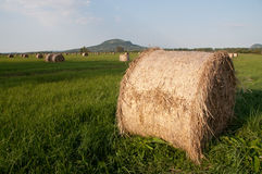 Hay field with bale detail volcano background Royalty Free Stock Photography