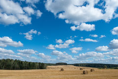 Hay field clouds. Hay field forest clouds space Stock Image