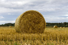Autumn Hay. Hay in the field with cloudy sky Royalty Free Stock Photos