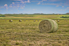Hay field, Wyoming Stock Photos