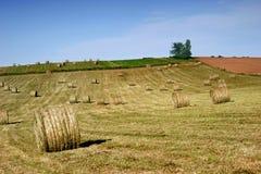 Hay Field com grandes pacotes fotografia de stock