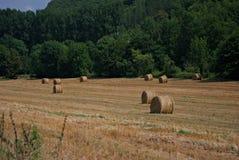Hay Field en Francia Imágenes de archivo libres de regalías