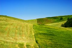Hay field in green countryside. Hay and green grass field on hill in countryside with blue sky background stock images