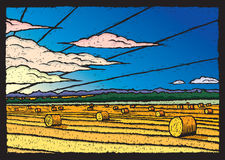 Hay Field. Illustration of a hay field during sunrise or sunset Stock Photo