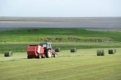Hay field Stock Photography
