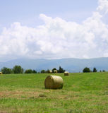 Hay in a field with mountains Royalty Free Stock Images